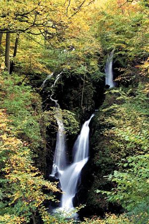 Lake District Walks: Stock Ghyll Falls, Ambleside
